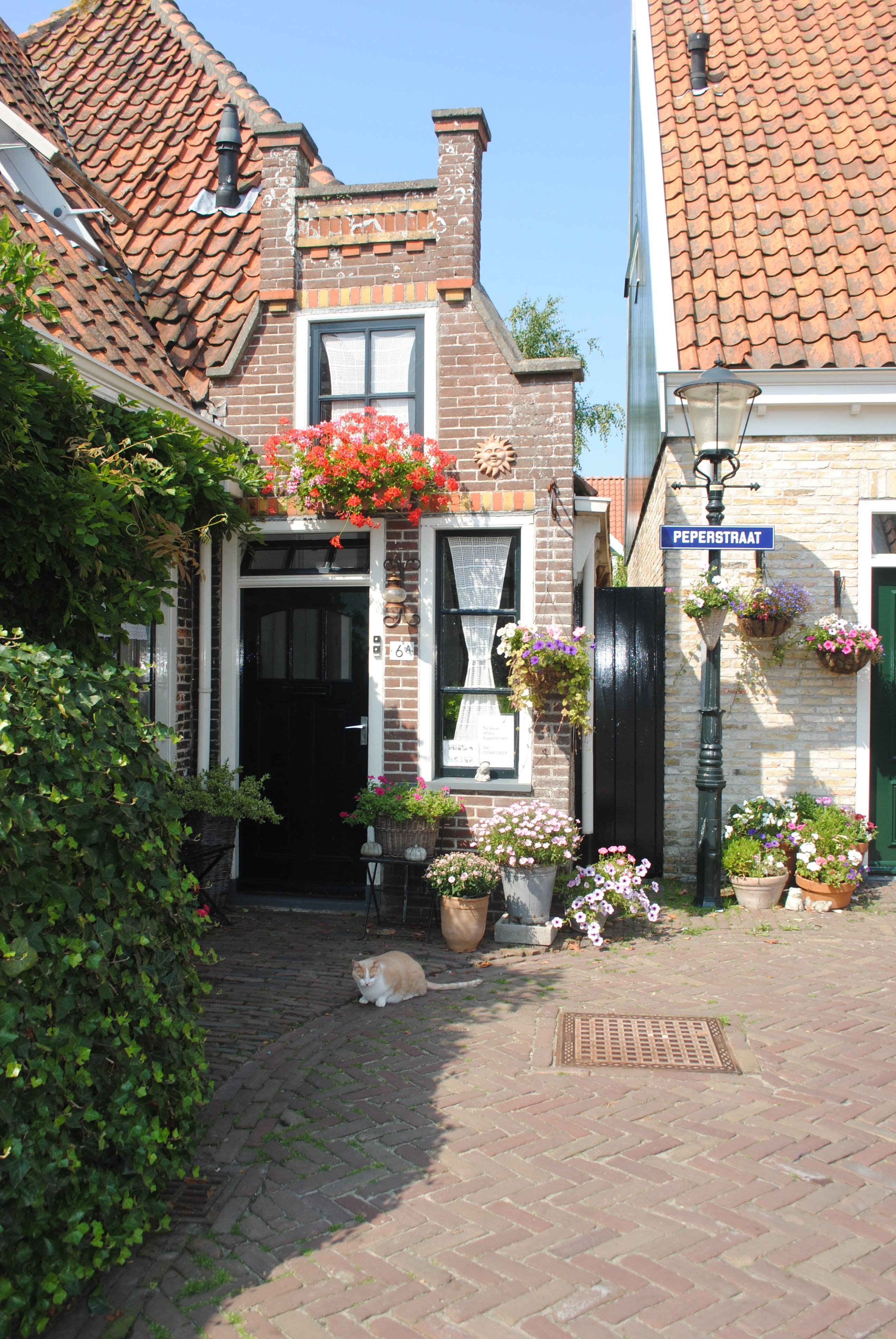 Mooie oude straatjes in Oosterend. Met poesje natuurlijk...